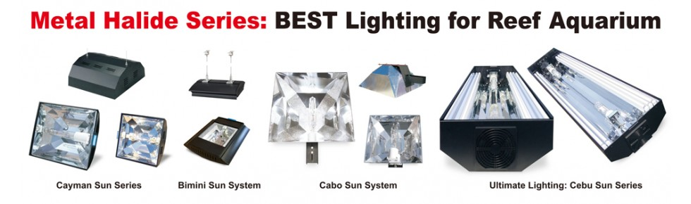Aquarium Lighting Systems